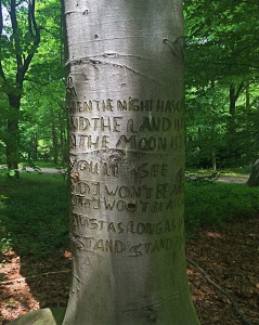 Tiergarten2
